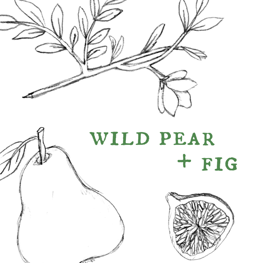 Wild pear + fig.png