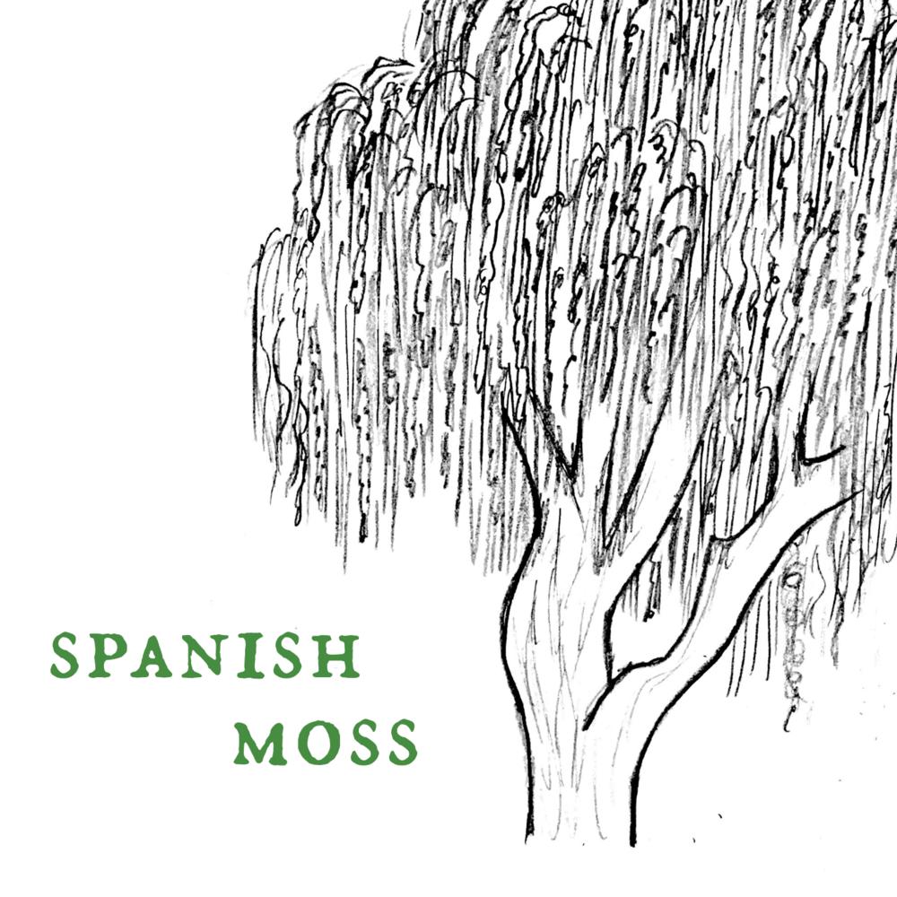 Spanish Oakmoss.png