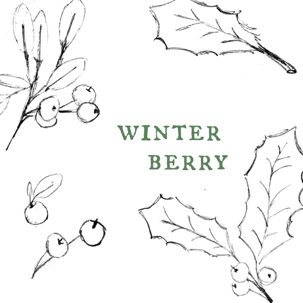 Winter Berry.png