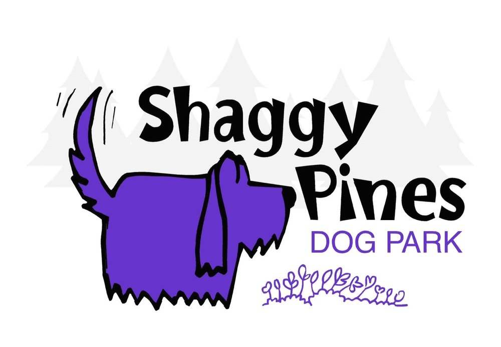 Shaggy Pines.jpg