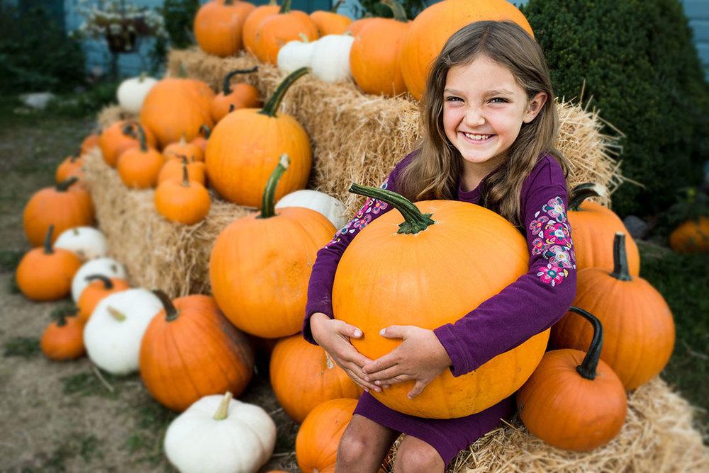 GVB Pumpkin Patch.jpg