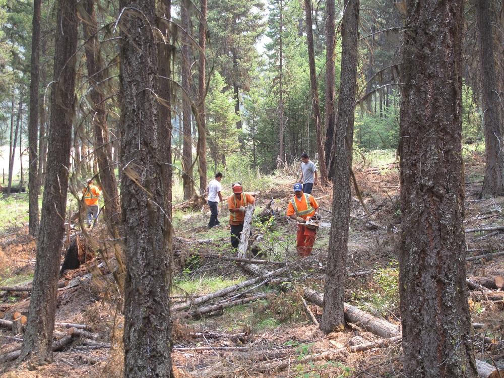 Firewood crew