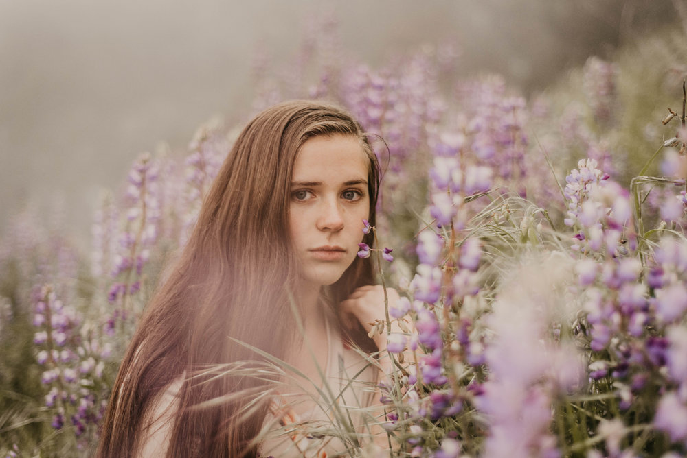 Lupine Flower Session