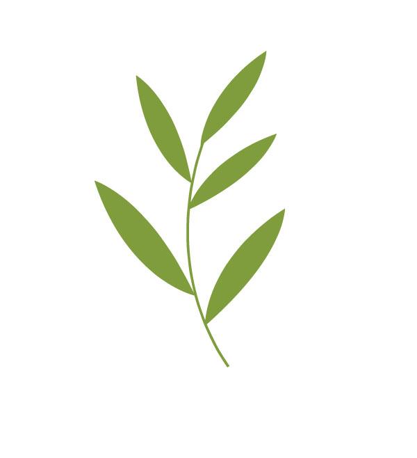 green-branch-verticle.jpg