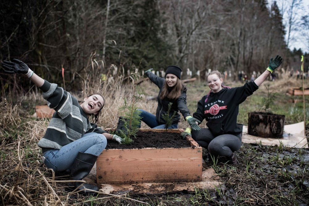 Three high school students plant trees using special planter boxes on Feb 3 2018.jpg