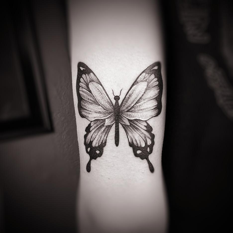 sam_butterfly.jpg