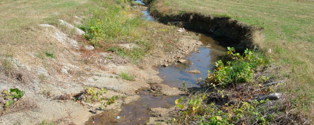 Contaminated Waterways