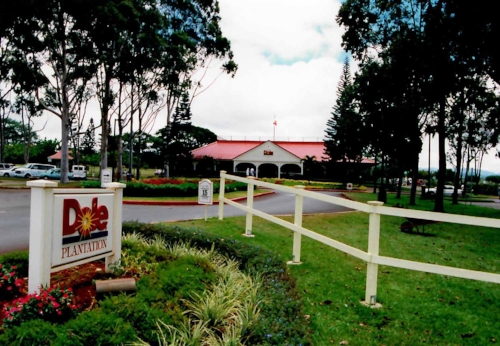 Dole Pineapple Plantation Contamination -