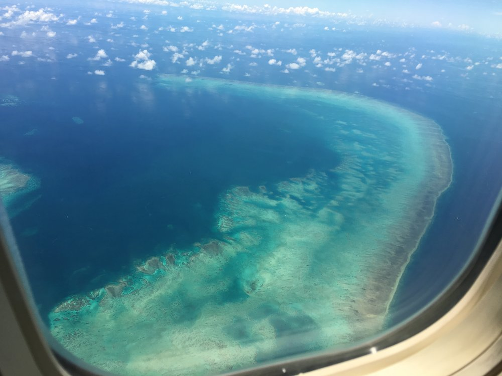 Great Barrier Reef from above! Louise Teo