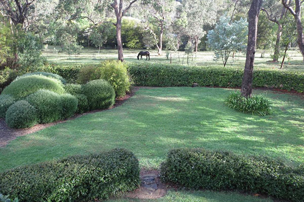 Beautiful gardens at Armidale Wejalee