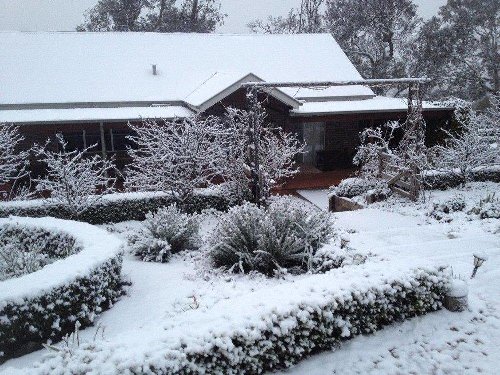 It doesn't snow often but it's beautiful when it does.