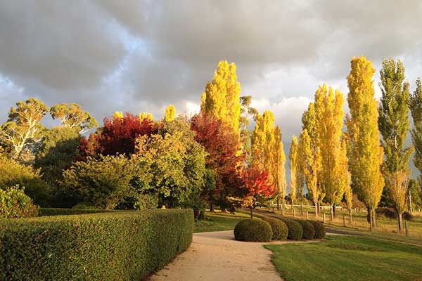 Glen Waverly B&B and Farm Stay