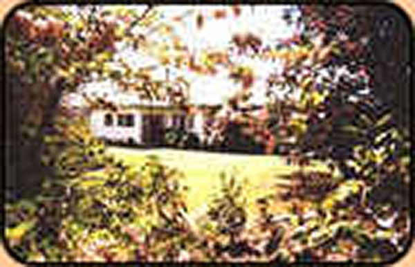 Copy of Silent Grove Farm Stay in Ben Lomond