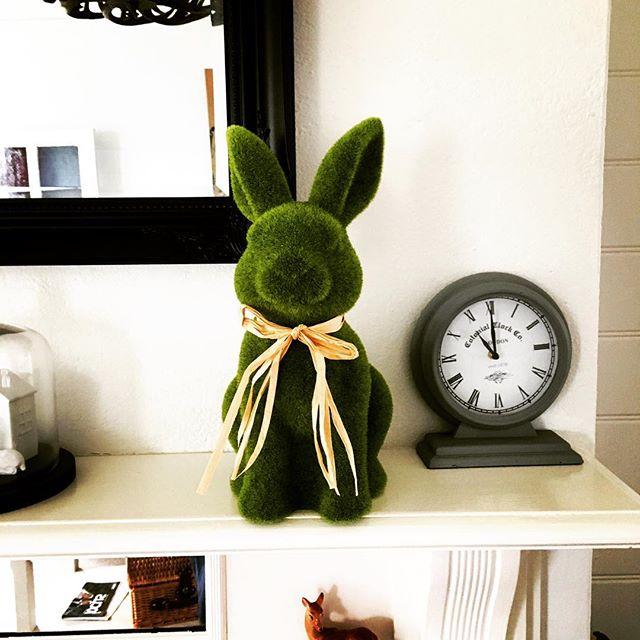 Booked your Easter Escape? Jump on www.ruralstay.com from Luxury B&B's, Farmstay's in the New England Region. #stay #getaway #armidalensw #gleninnesnsw #guyransw #urallansw #walchansw #visittenterfield #autumn  #ruralstay #newenglandhighcountry
