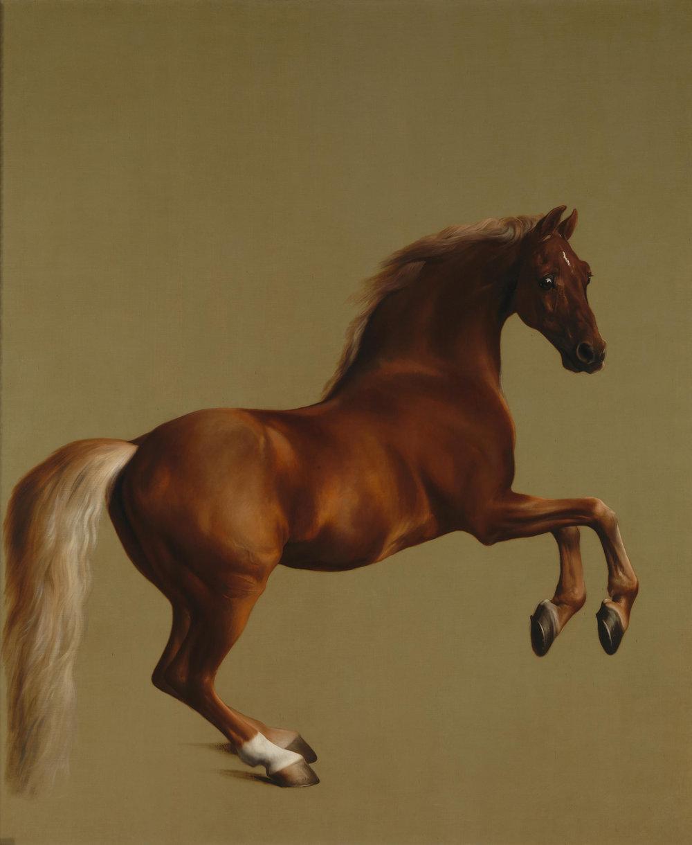 Geroge Stubbs: Estudio de anatomía del caballo, 1762