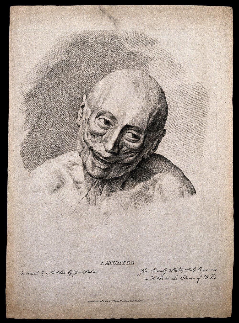 Geroge Stubbs: Estudio sobre los músculos de la cara: sobre 1762