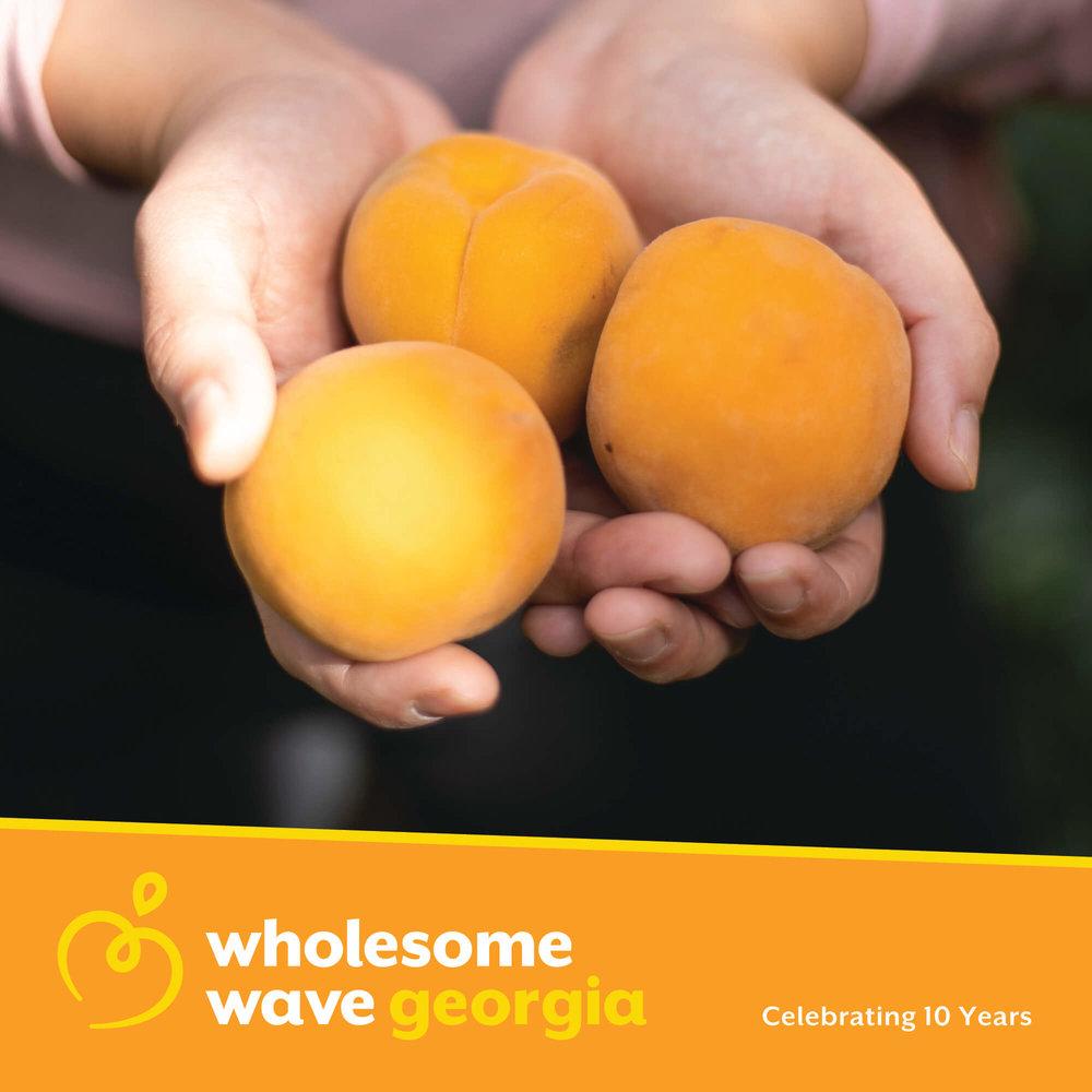 WHOLESOME WAVE GEORGIA - Brand Identity