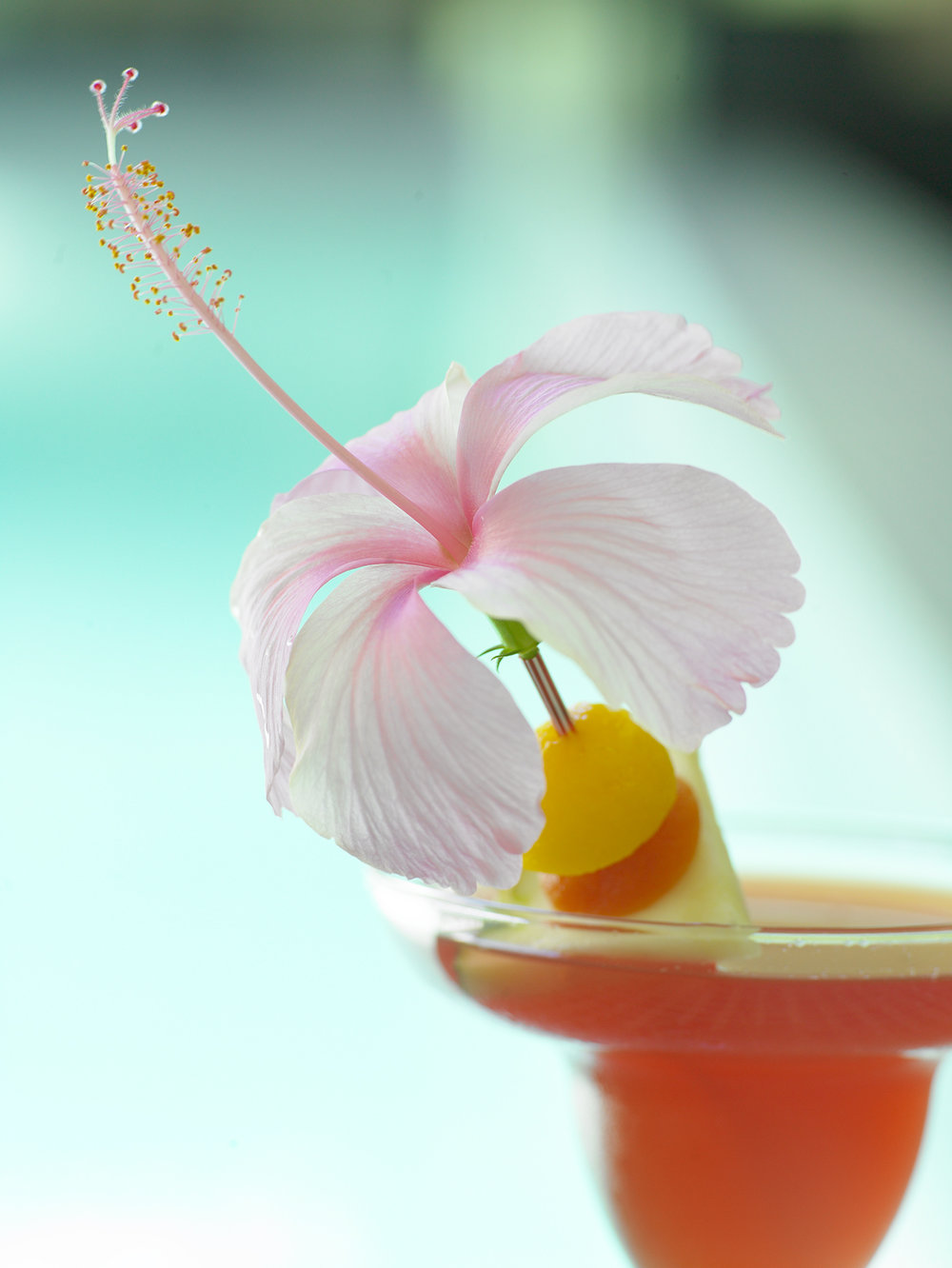 Hibiscus Cocktails, Breezes Resort, Jamaica