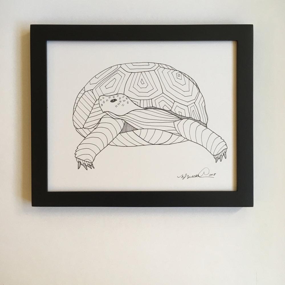 Framed_Desert Tortoise.jpg