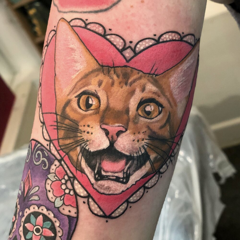 pinky-darling-cat-portrait-colchester-essex-black-hope-tattoo.jpg