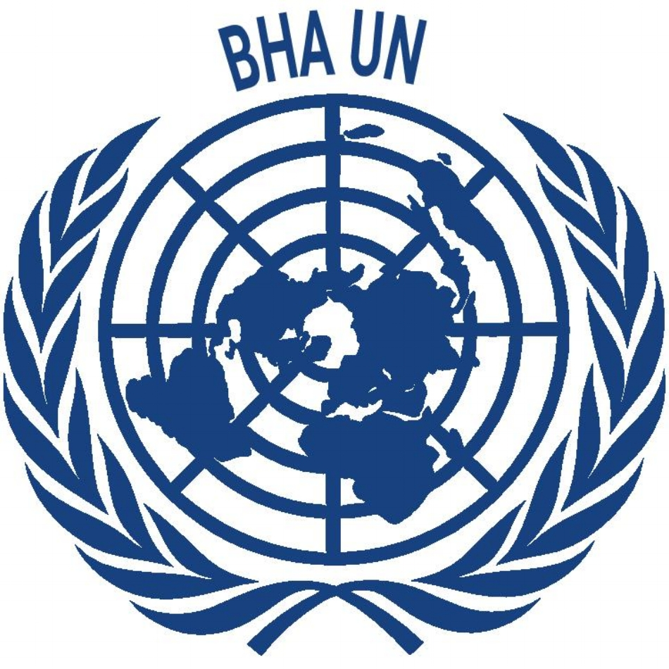Bosnia and Herzegovina Association for United Nations