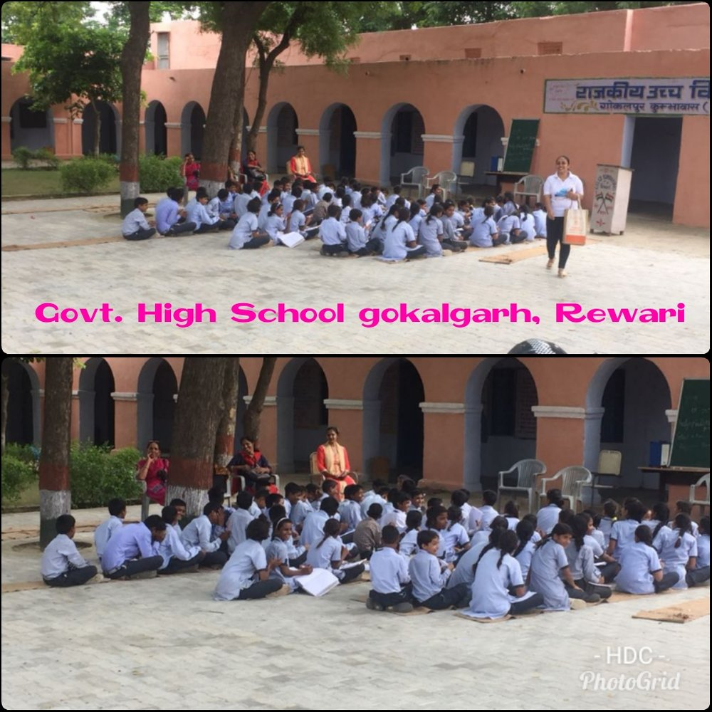 Govt. High School Gokalgarh Rewari.jpeg