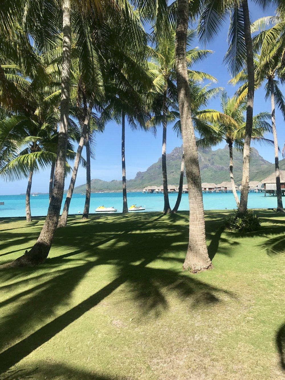 FS Bora Bora 5.jpg