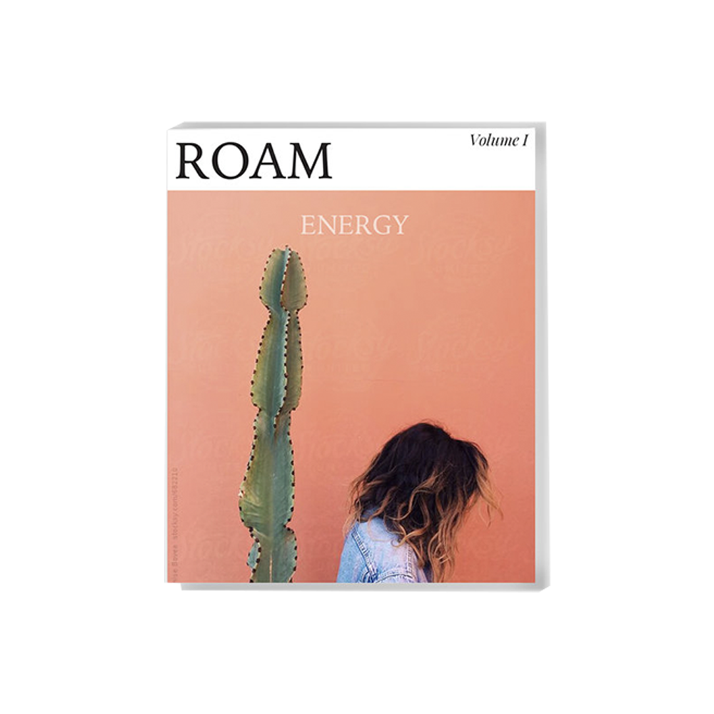 PRINT  ROAM TRAVEL GUIDE