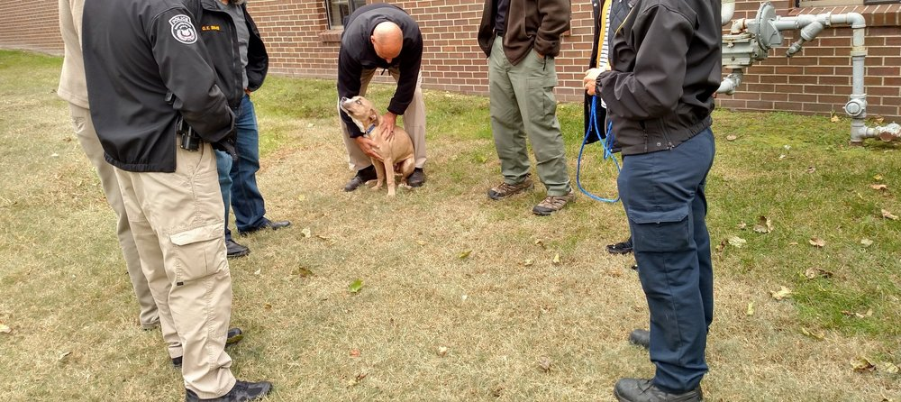 Law enforcement training - Protection for family pets starts with proper training for those entrusted to defend them.