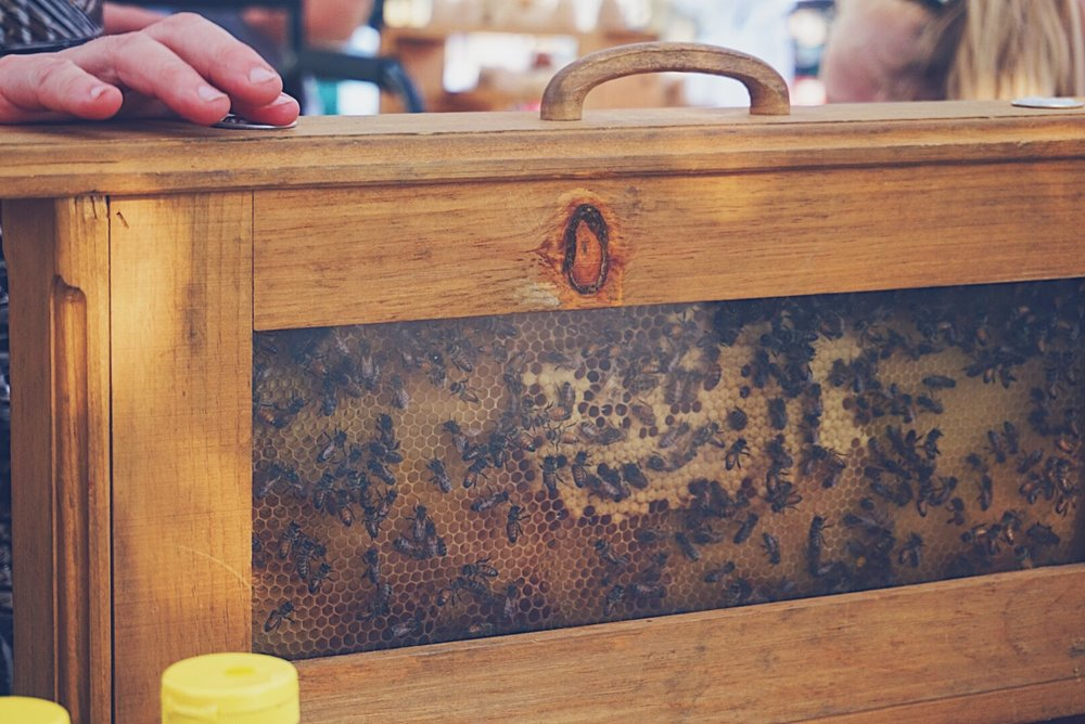 #SoulFoodFestival is a family event, and if you run a honey business, Bees are a part of your family! Of course they tagged along.