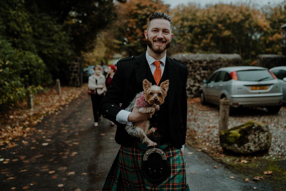 dogs at weddings northern ireland