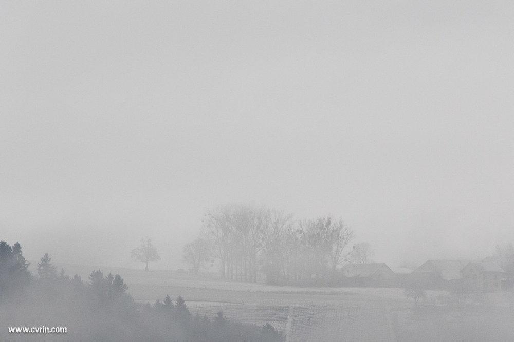 arnex_brouillard_neige_040217_4228.jpg