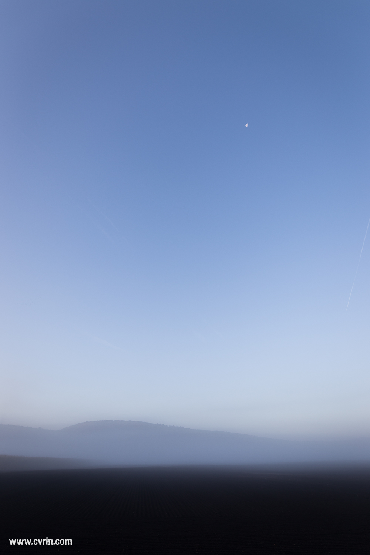 Plus tard dans la matinée…  Canon 6D • Sigma ART 20mm