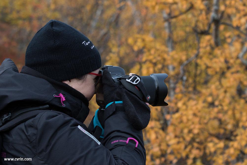 Hej! DaviS en avait marre d'apparaître seul dans les articles!  Sigma 100-400mm • Canon 7DMKII