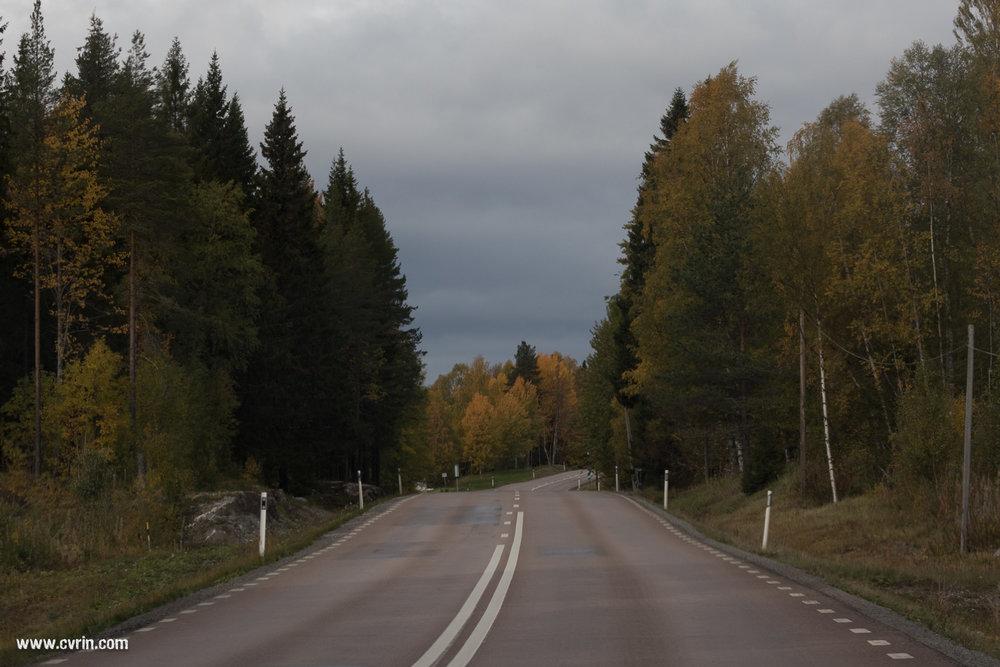Sur les routes désertiques suédoises…  Sigma 100-400mm • Canon 7DMKII