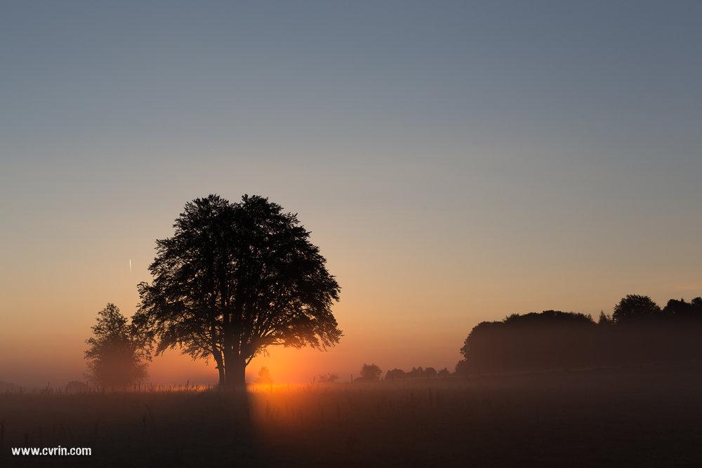 Lever de soleil au col de la Tourne, Neuchâtel • 31.08.16  Canon 6D • Sigma ART 50mm