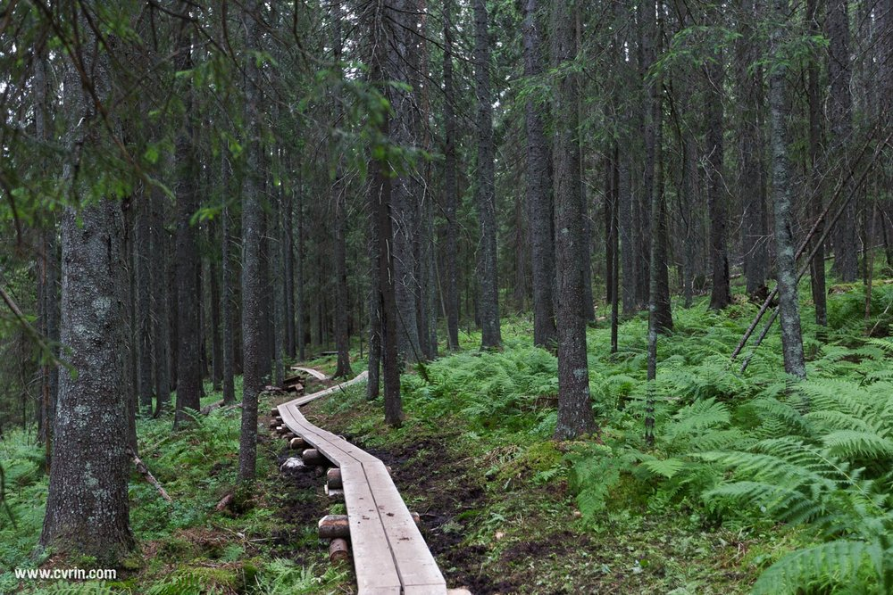 Road trip: Suède - Été 2015