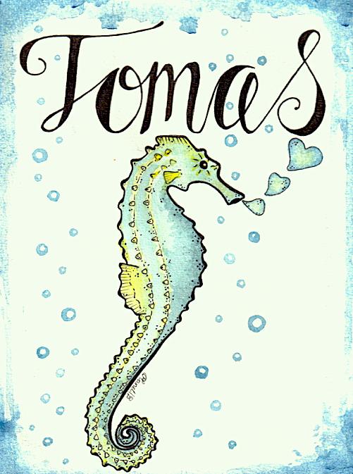 Zeepaardje Tomas-groenig.jpg