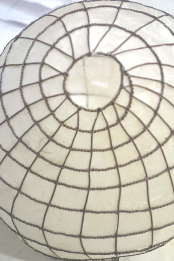 T&CMouse-swoopy-light-close-up-bottom.jpg