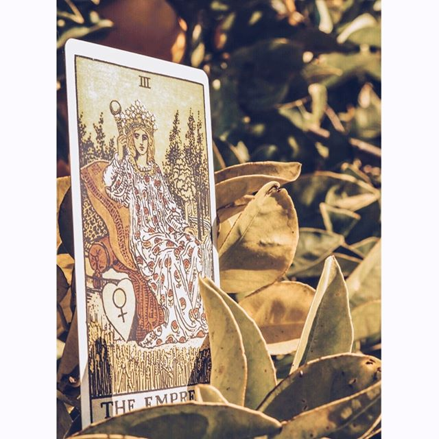 Hello soul friends & Happy New Year! 2019 is going to be ruled by the energies of the Hanged Man and the Empress. This new year is asking us to surrender and seeing things from different perspectives - sometimes we need to stop in order to understand what we need to do to reach a completion of something; from learning on how to complete cycles that no longer serve us, we blossom with the Empress energy - we are open to take action in our lives, to align to our purpose. To prepare ourselves to the next cycle. This year's energy, from a numerology perspective is a 12 (2+0+1+9) and this number is about clearing and completing cycles. When we reach a Year 12 it means we have completed a cycle of experiences and it is time to regenerate towards a higher consciousness. ⠀⠀⠀⠀⠀⠀⠀⠀⠀ My personal card for the year is the Hermit, one of my faves ❤️ if you wanna know which one is your personal card of the year just add your day and month of birth with 2019, with that number simplify until you get a digit between 1-21 🤩⠀⠀⠀⠀⠀⠀⠀⠀⠀ .⠀⠀⠀⠀⠀⠀⠀⠀⠀ .⠀⠀⠀⠀⠀⠀⠀⠀⠀ #callierise #tarot #tarotcards #spirituality #spiritualgrowth #highvibration #intuitiveliving #soulwisdom #soulcalling #tarotreadersofinstagram #tarotcommunity #taroteverydamnday #tarologa #witches #witchesofinstagram #energies #empress #goddess #hanged man #spiritualjourney