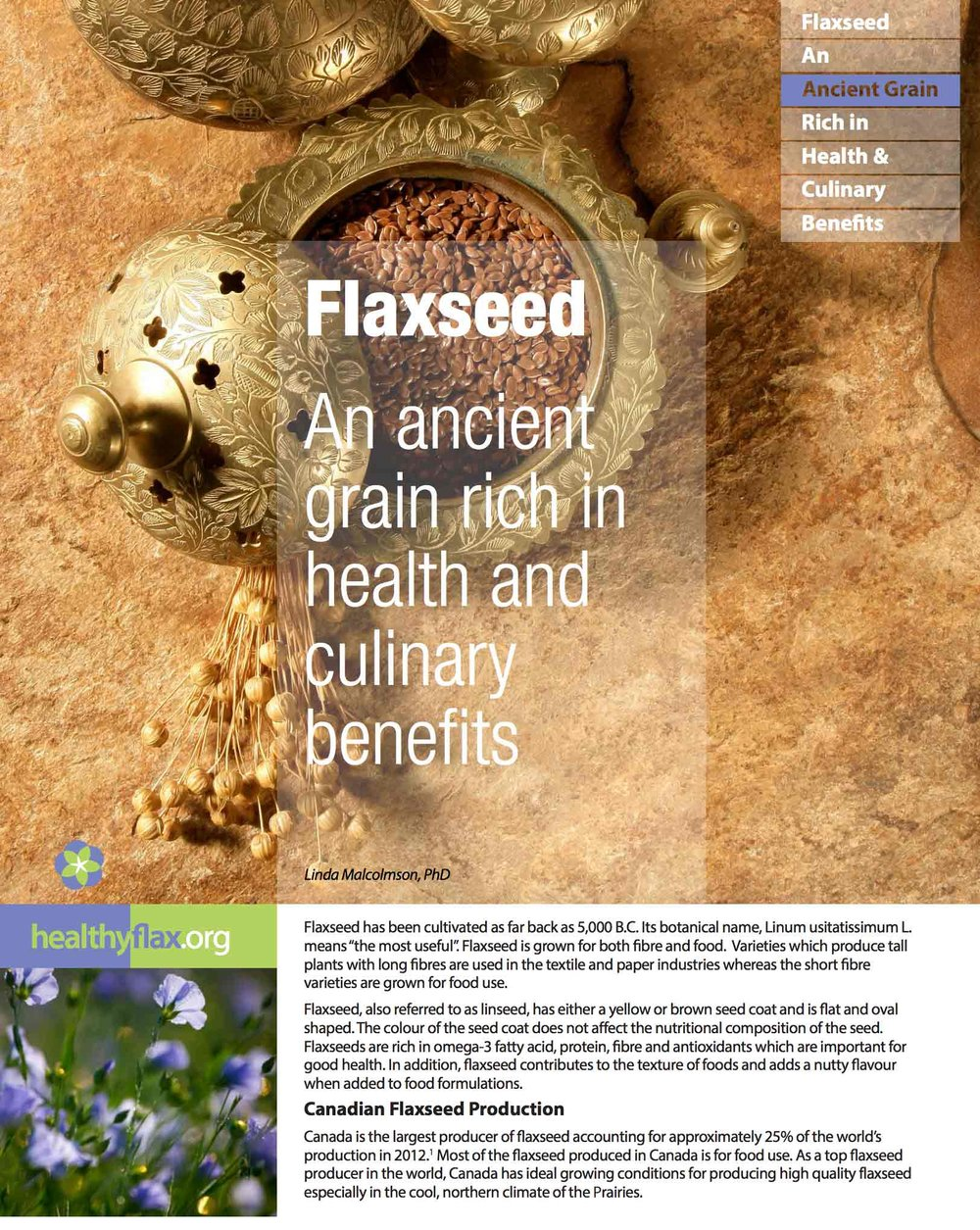 Flaxseed: An ancient grain rich in health and culinary benefits - Read the full article as a PDF.