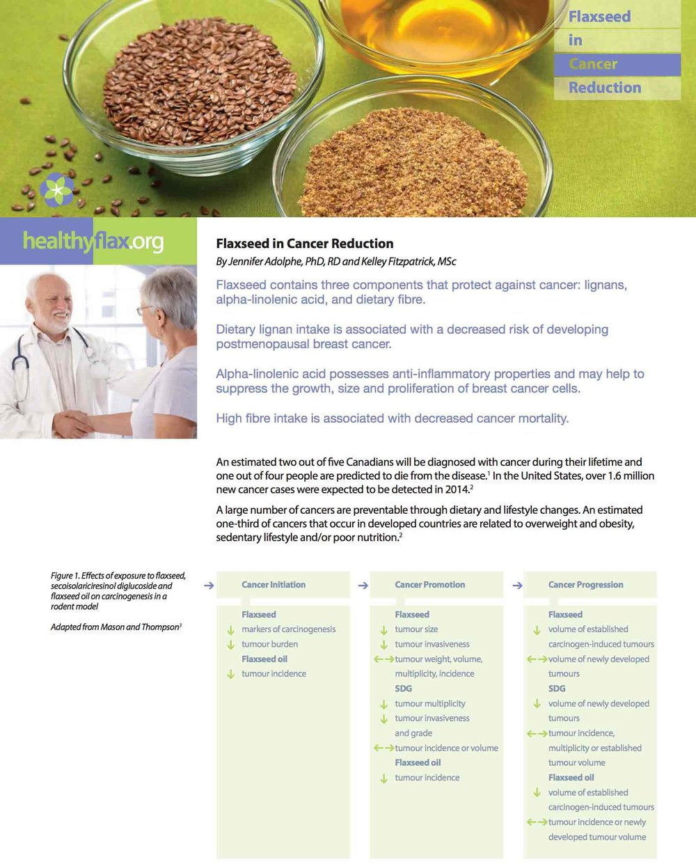 Flaxseed and Cancer Reduction - Read the full article as a PDF.