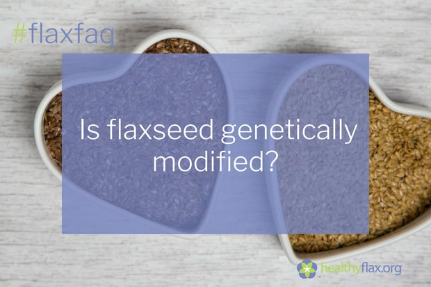 Answer - No. Genetically modified flaxseed is not legal for sale in Canada or the US. Although a genetically modified flaxseed variety was developed in the 1990s, the variety has been deregistered and ordered destroyed.