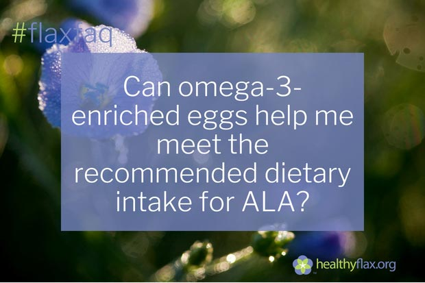 Answer - Hens are fed flaxseed to produce omega-3-enriched eggs. One omega-3-enriched egg provides on average 0.34 g of ALA and 0.13 g of EPA + DHA. By itself, one omega-3-enriched egg provides about one-quarter to one-half of the Adequate Intake of ALA, depending on your age and gender. If eaten on a regular basis, omega-3-enriched eggs make a substantial contribution to your need for omega-3 fatty acids. While the omega-3 content may vary substantially between different brands, the caloric value and protein content of omega-3-enriched eggs are similar to that of regular eggs.