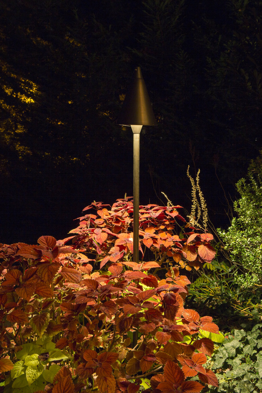 34109476545-autumn-forest-hideaway.jpg