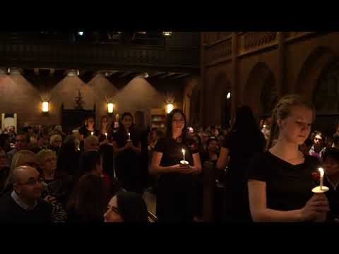 Concert Videos — Mario Dell'Olio