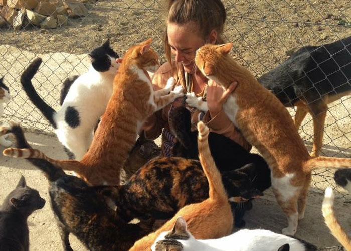 Rosie&cats.jpg