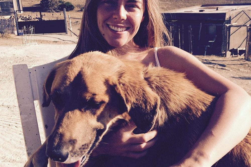 SFT_Adopt_Dogs_Profile_Terry_01.jpg