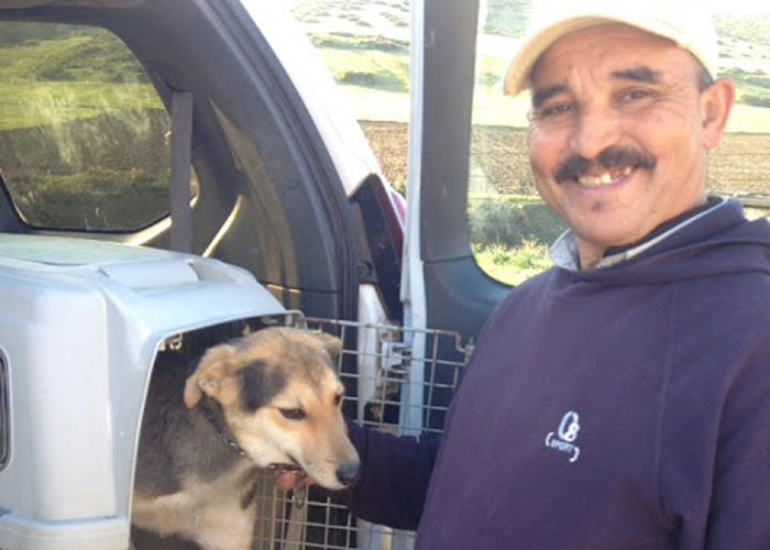 Abdel Malik, the owner of Dorothy, with his dog who he agreed to stop tying up. He is so genuinely happy here after his dog received vaccinations and was neutered.