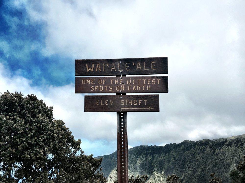 Kauai 11.jpg
